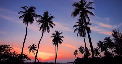 Куда поехать в декабре: 5 стран, где зимой тепло, как летом
