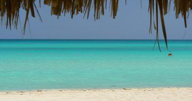 Куда поехать в январе: 5 вариантов пляжного отдыха